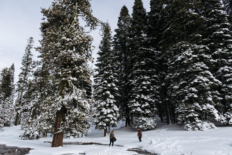 lassen_snow_jp-12