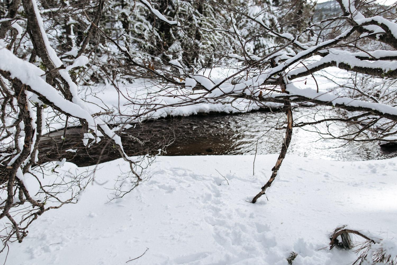 lassen_snow_jp-3